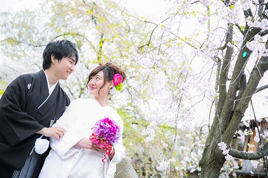 20150302_wasoubiyori_0127
