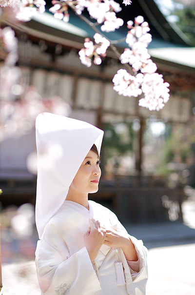 201602_wasou_0054