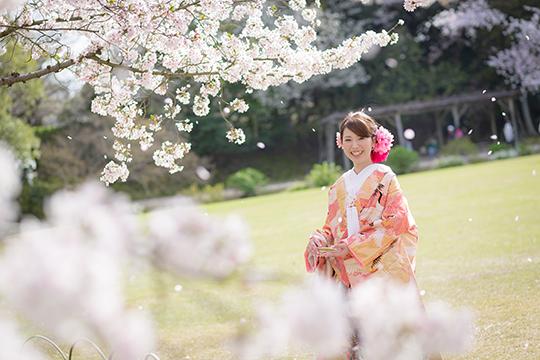 桜 後楽園